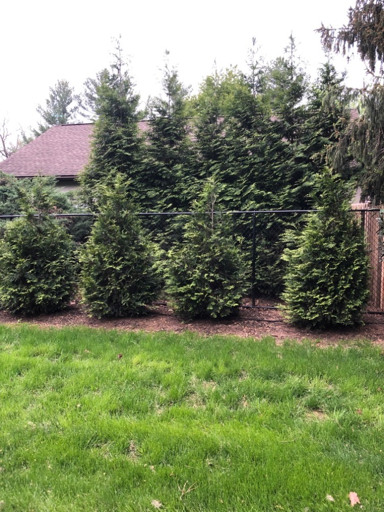 Buying Online Heaps Landscaping